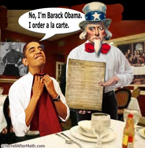Terrell - Obama Constitution
